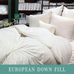Down Comforter - European Down Fill