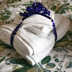 Light and Quick Dry Bath Towel Set